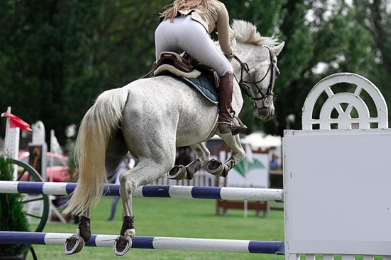 tipos de botas de equitacion